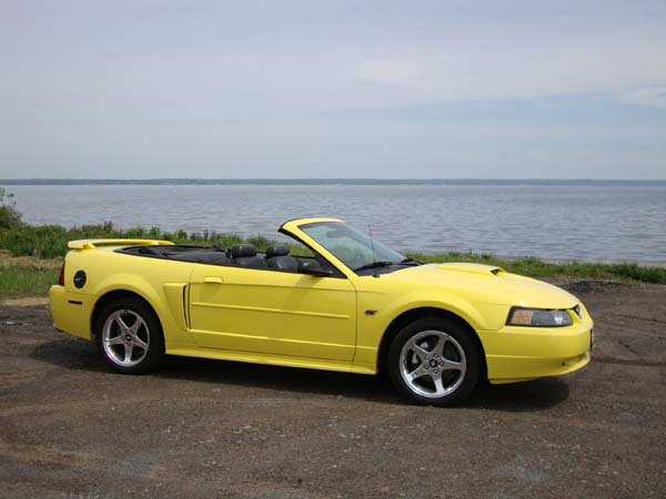 Gene and Pat Gonzales, 2003 Mustang GT Convertible click to enlarge and see description